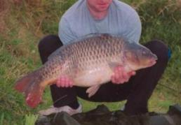 Common carp at 24 Pounds Lichfield