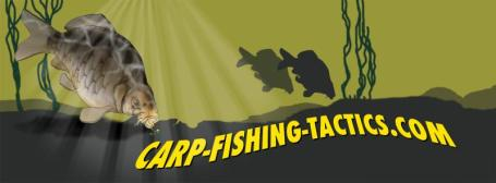 Logo fishing for carp