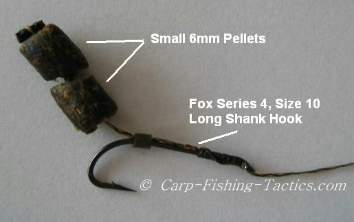 Small pellet rig to catch out wary big carp