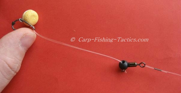 testing strength of rotation on carp rig
