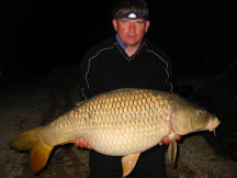 Smith 35 Pound Common Carp - NICE!!