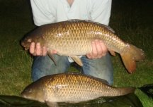 Brace of common carps from Poolhall's runs water