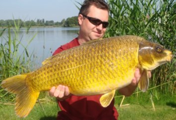 Photo of 25 pound huge ghost carp
