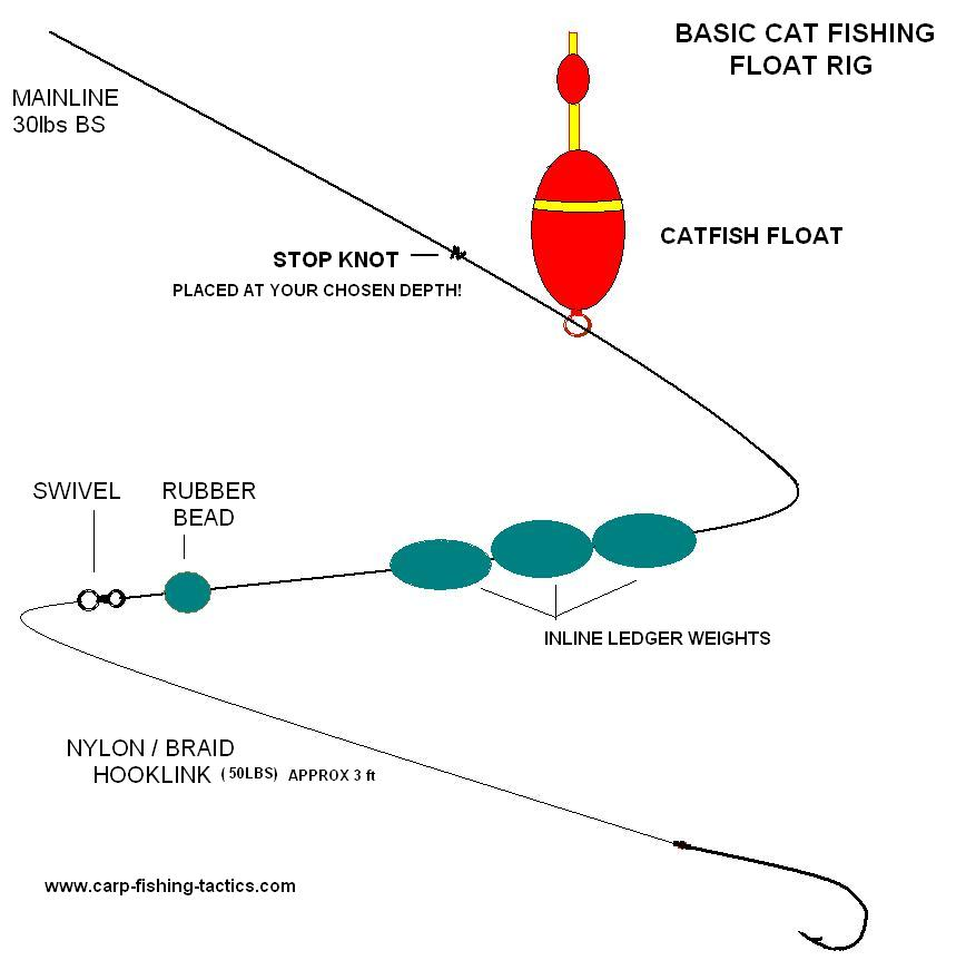 Photo diagram shows a Catfish Rig Catching Big Cats