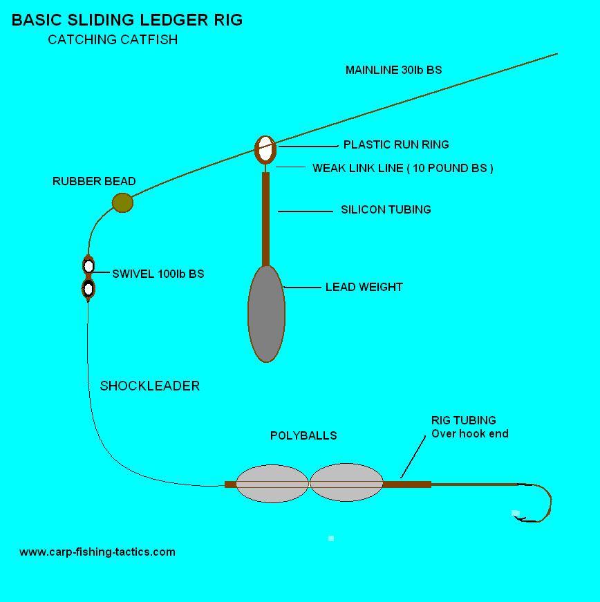 diagram shows catfish ledger rigs