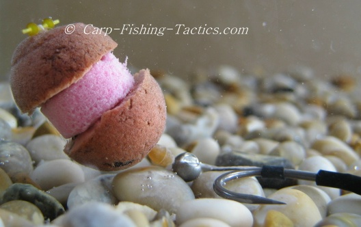 What Are Boilies for Carp Fishing - lakefishingtechniques.com