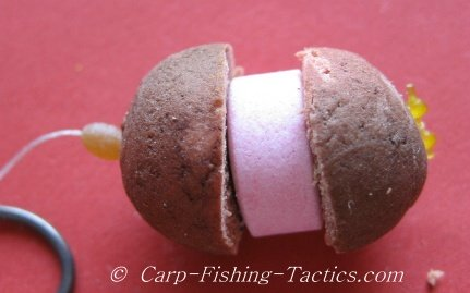 Shows image of rig ready for catching carp