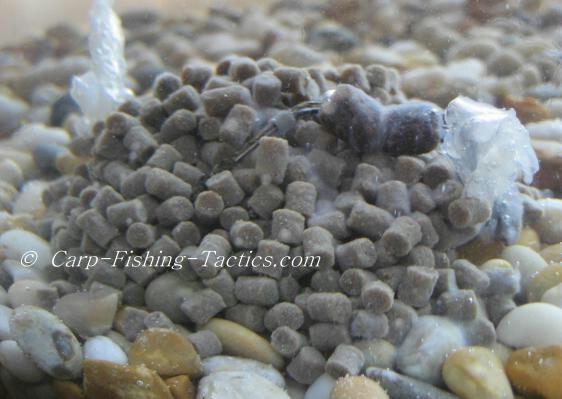 Image of pellets after melting